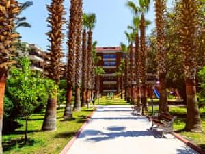 Selge Beach Resort photo 30