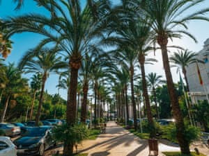 Alanda Hotel Marbella photo 59