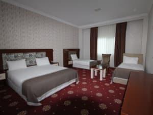 Armina Thermal Hotel photo 8