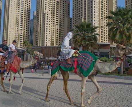 فنادق دبي للعوائل 19